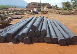 CCA Treated Poles, SABS Approved Poles, Quality CCA poles