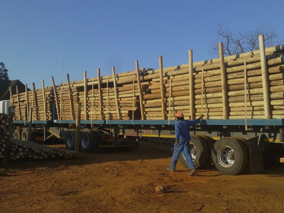 CCA Poles, Treated Poles, Construction Timber, Decking, Flooring