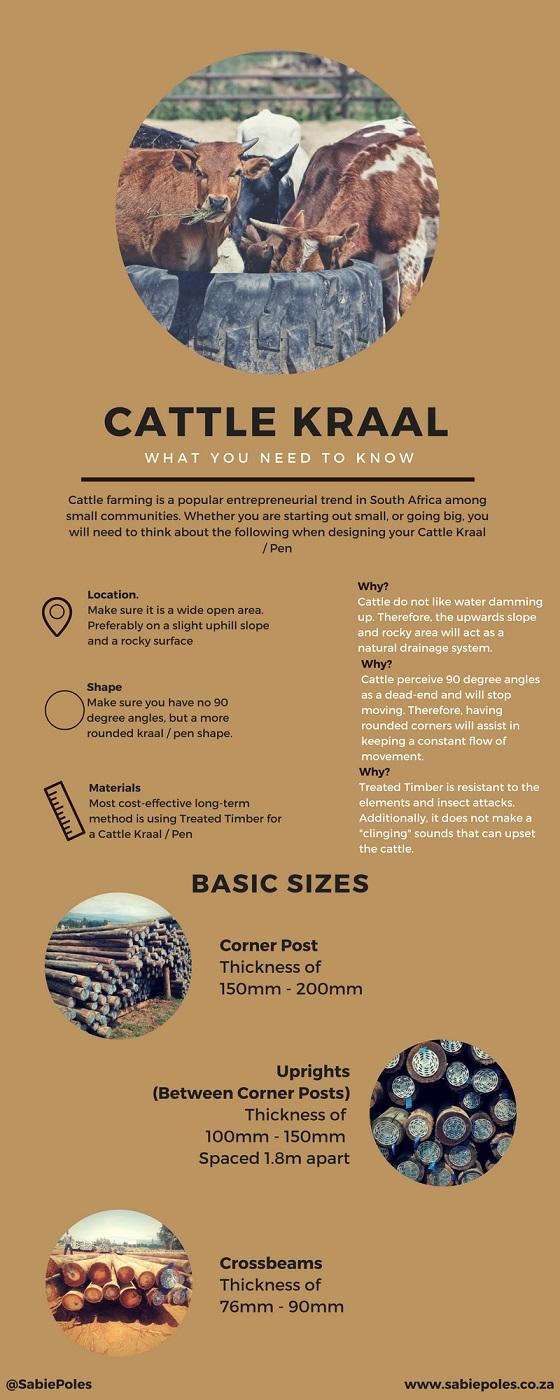 Construction of cattle kraal / pen with cca treated timber