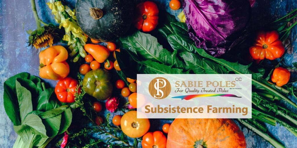 Subsistence Farming: Organic Backyard Veggies and Fruit