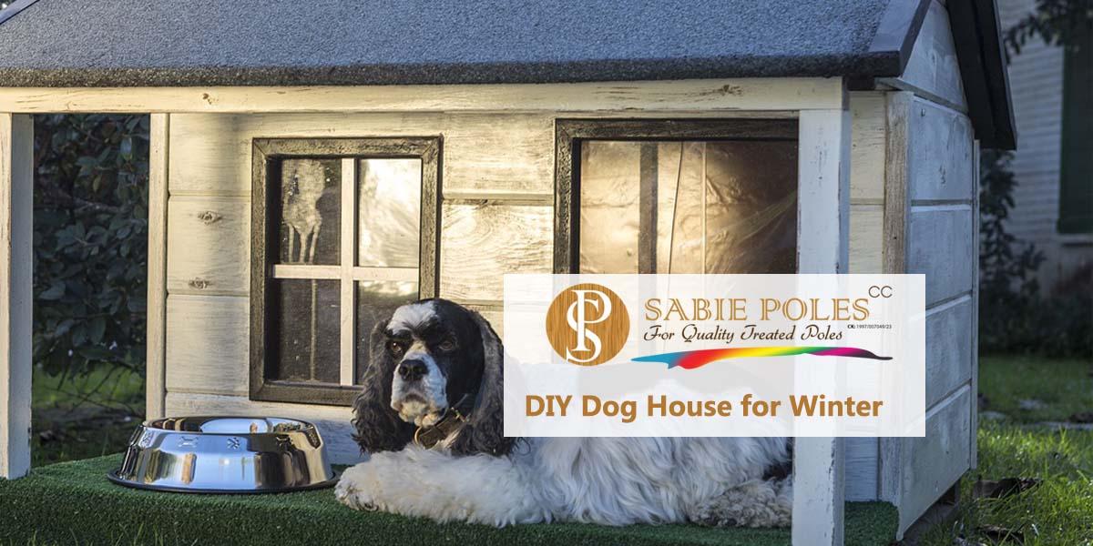 DIY Dog House
