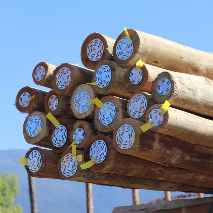 Tanalised CCA Poles H4