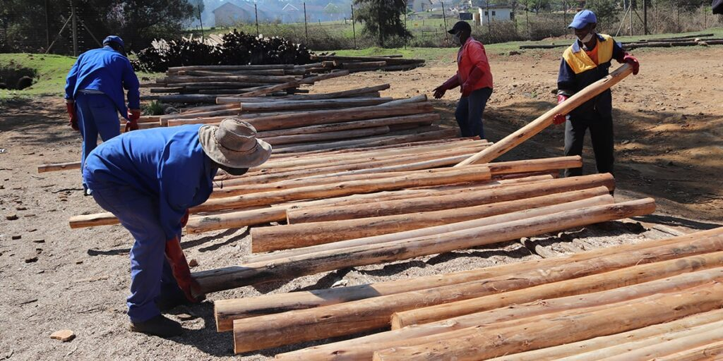 Intentional Quality: A business born from a passion for timber