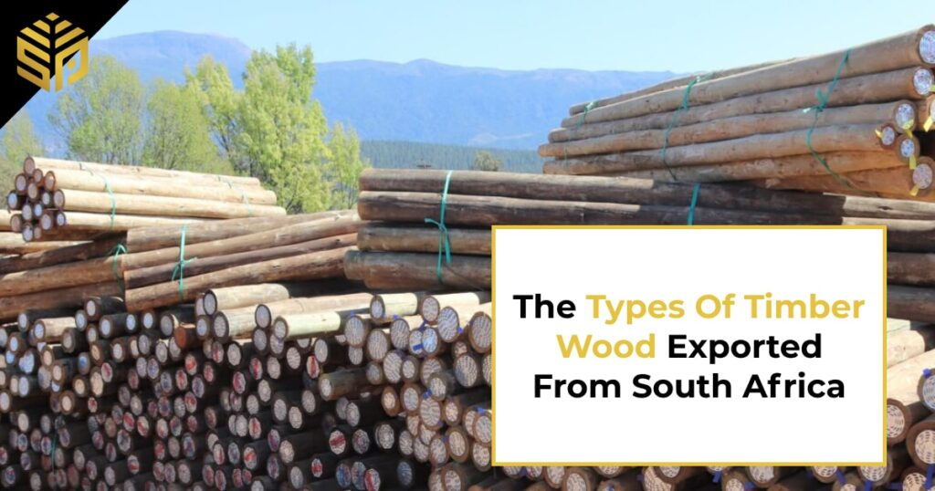 Timber Wood -The types of timber wood exported from South Africa