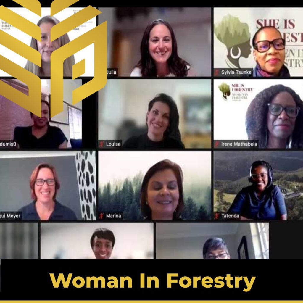 Timber Forestry - The Women Leading The Way In The South African Forestry Sector